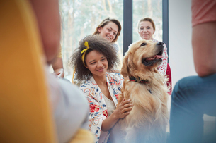 Woman petting dog in group therapy sessionの写真素材 [FYI02741978]