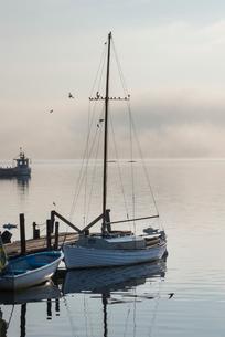 Sweden, Sodermanland, Gamla Oxelosund, Yachts at marina in morningの写真素材 [FYI02742143]