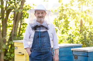 Portrait confident beekeeper in protective hat next to beehivesの写真素材 [FYI02742352]