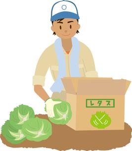 東南アジア系の農業分野の外国人技能実習生のイラスト素材 [FYI02742798]