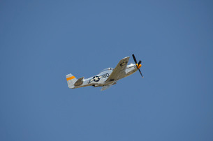A P-51 Mustang in flight over Florida.の写真素材 [FYI02742890]