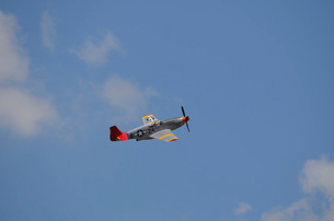 A restored P-51 Mustang associated with the Tuskegee Airmen.の写真素材 [FYI02743125]