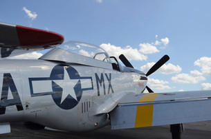 A North American F-51D Mustang.の写真素材 [FYI02743163]