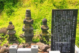雨宮刑部の墓の写真素材 [FYI02744888]