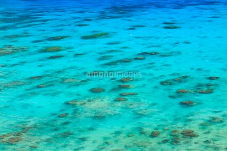 慶良間諸島,渡嘉敷島,クバンダキ展望台から望む海の写真素材 [FYI02747206]