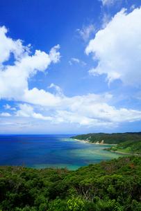 奄美大島 蒲生崎観光公園から望む笠利崎と東シナ海の写真素材 [FYI02747451]