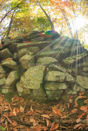 女神岳城跡の石垣と木もれ日,魚眼の写真素材 [FYI02748697]