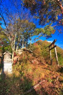 千古屋城跡の蚕影神社と根古屋城跡遠望の写真素材 [FYI02749140]