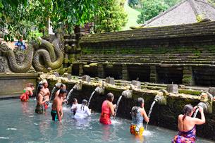 バリ島ティルタウンプル寺院の沐浴場の写真素材 [FYI02750541]
