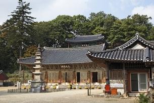 Main Hall, stone pagoda, Daegwangbojeon, Magoksa Templeの写真素材 [FYI02750542]