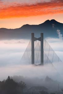 秩父公園橋と雲海の写真素材 [FYI02751805]