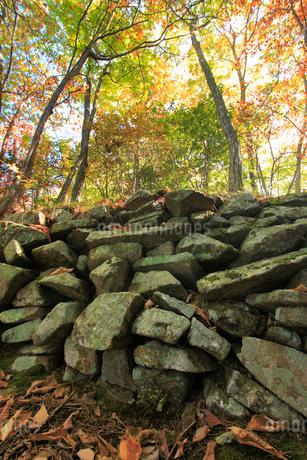 女神岳城跡の石垣の写真素材 [FYI02752919]