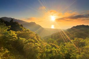 新緑の原生林と船行前岳と明星岳と朝日と安房方向の海の写真素材 [FYI02753573]