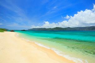 奄美大島 倉崎湾と崎原ビーチの写真素材 [FYI02754271]