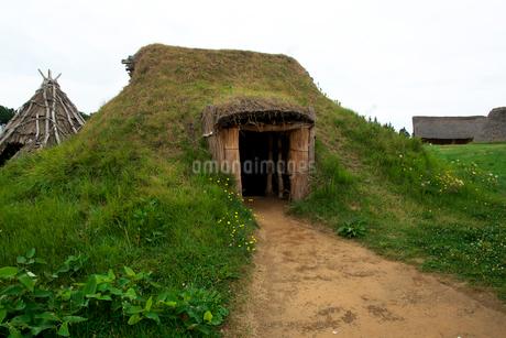三内丸山遺跡の竪穴式住居跡の写真素材 [FYI02755173]