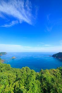 浦ノ内須ノ浦付近から望む甲崎などの海岸線の写真素材 [FYI02755898]