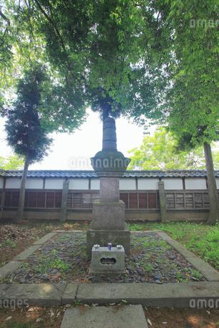 真田信之の墓の写真素材 [FYI02756860]