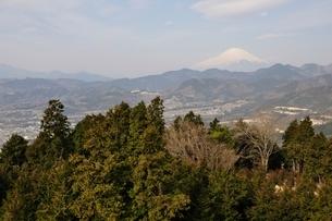 菜の花台より富士山の写真素材 [FYI02810028]