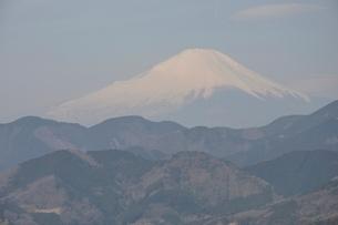 菜の花台より富士山の写真素材 [FYI02810030]
