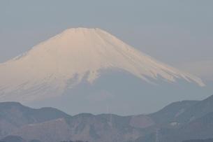 菜の花台より富士山の写真素材 [FYI02810031]