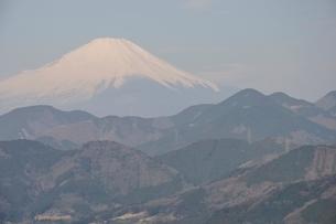 菜の花台より富士山の写真素材 [FYI02810033]
