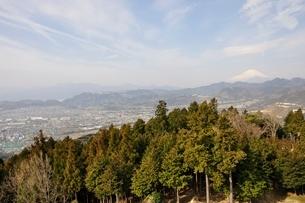 菜の花台より富士山の写真素材 [FYI02810035]