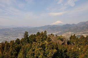 菜の花台より富士山の写真素材 [FYI02810036]