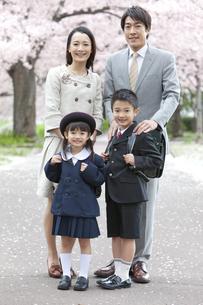 桜と笑顔の4人家族の写真素材 [FYI02811888]
