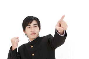 指をさしている男子中高生の写真素材 [FYI02812252]
