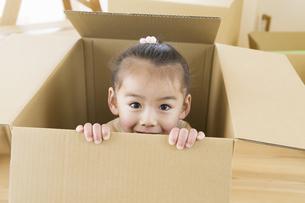 ダンボール箱の中から顔を出す女の子の写真素材 [FYI02813243]
