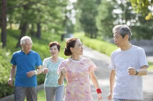 ジョギングをするシニアグループの写真素材 [FYI02813538]