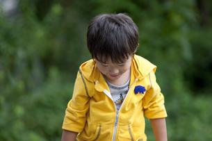 肩をおとす男の子の写真素材 [FYI02813718]