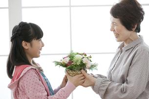 花束を渡す孫と祖母の写真素材 [FYI02814036]