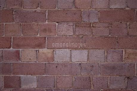 レンガ壁面の写真素材 [FYI02814477]