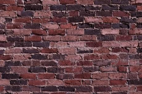 レンガ壁面の写真素材 [FYI02814542]