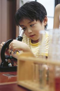 顕微鏡をのぞく男の子の写真素材 [FYI02814932]