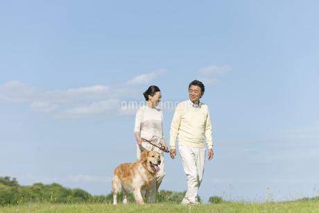 犬の散歩をする中高年夫婦の写真素材 [FYI02815074]