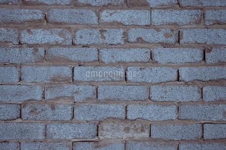 レンガ壁面の写真素材 [FYI02815204]
