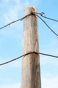 木の柵とワイヤーの写真素材 [FYI02815239]