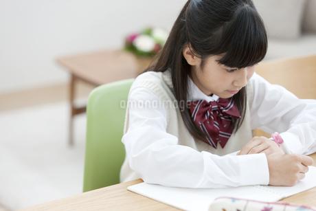 勉強をする女の子の写真素材 [FYI02815289]