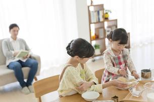 料理をする母親と娘の写真素材 [FYI02815371]