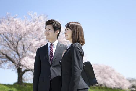 桜並木とビジネスマン2人の写真素材 [FYI02815468]