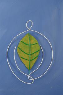 ワイヤーで作った葉を抱く人の写真素材 [FYI02815556]