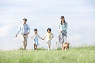 散歩をする家族と犬の写真素材 [FYI02815762]
