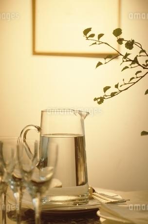 グラスと飲料水と植物の写真素材 [FYI02816590]