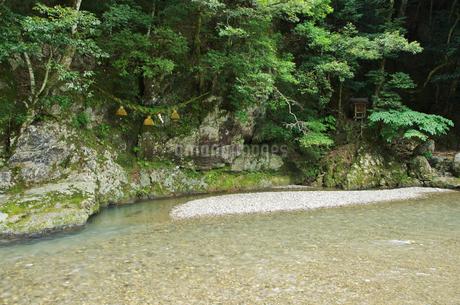 鵜の瀬と遠敷川の写真素材 [FYI02816866]