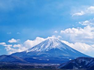 本栖湖より望む富士山の写真素材 [FYI02817081]