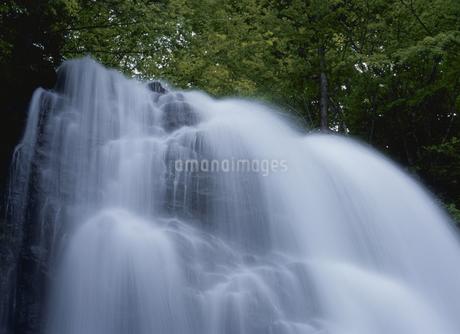 小野川不動滝の写真素材 [FYI02817243]