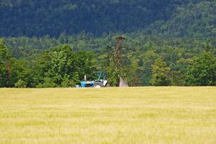 麓郷展望台の麦畑とトラクターの写真素材 [FYI02817513]