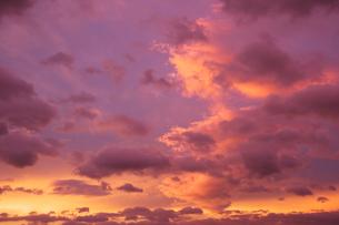 赤く染まった夕焼けの写真素材 [FYI02817909]